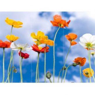 Happy Poppies Canvas Wall Art