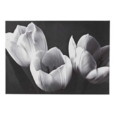 Noir Luxe Black and White Tulips Canvas. _Ñ_